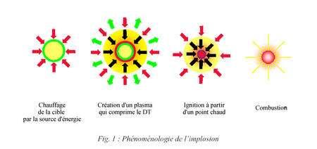 Mécanisme de fusion. © www.ilp.u-bordeaux1