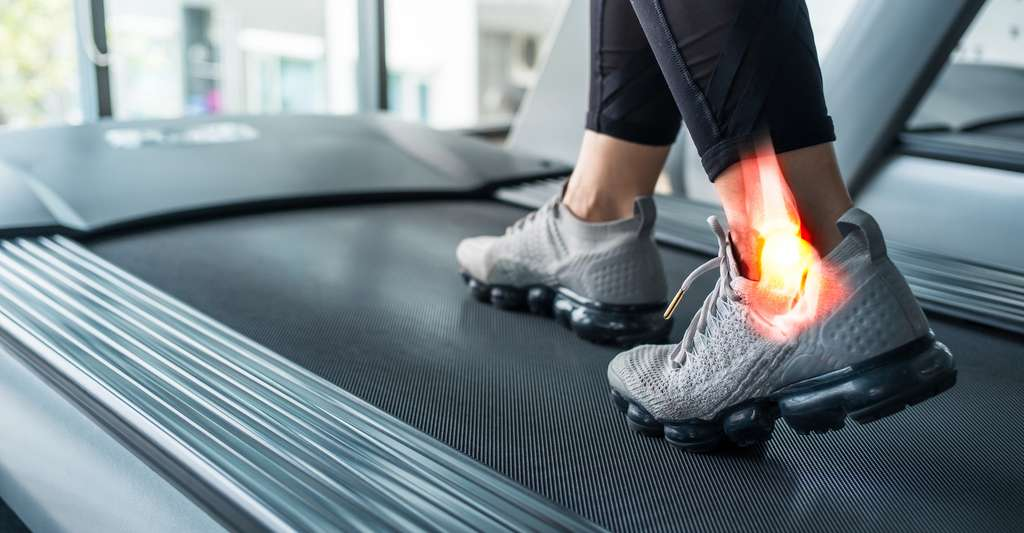 Les travaux des chercheurs de l'université Duke (États-Unis) expliquent aussi pourquoi les blessures au genou ou à la hanche sont plus difficiles à guérir que celles à la cheville. © steph photographies, Adobe Stock