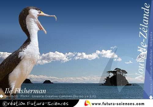 Ile Fisherman