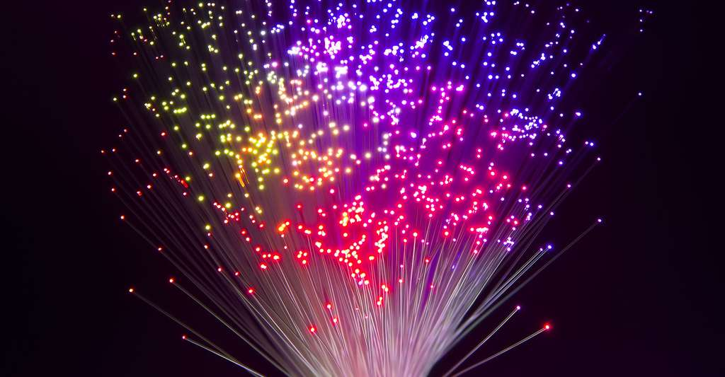 La luminescence dans tous ses états. © Asharkyu, Shutterstock