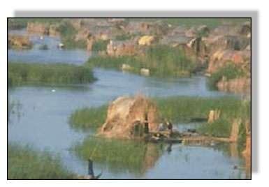 Vue des anciens marais d'Irak. Source : UNEP.