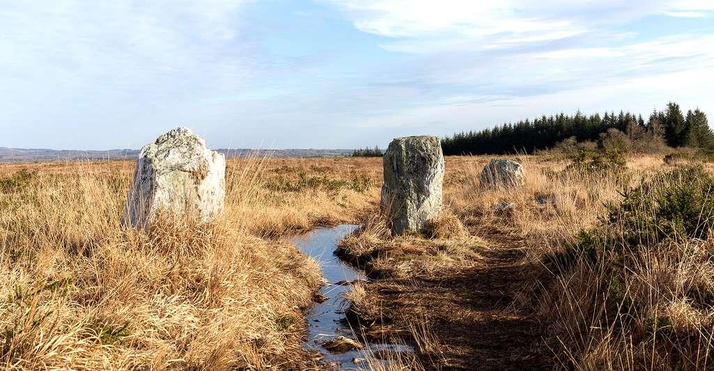 Alignement mégalithique de La Noce de Pierres à Brasparts. © Pymouss, Wikimedia commons, CC by-sa 4.0