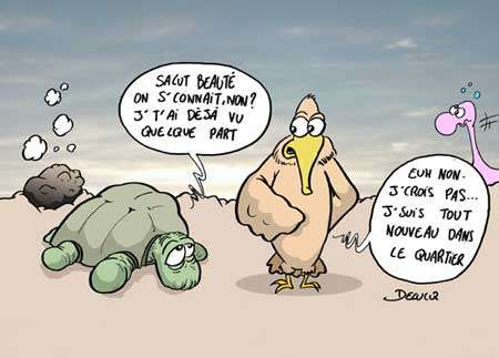 © Delucq - Gueules d'Humour pour Futura-Sciences