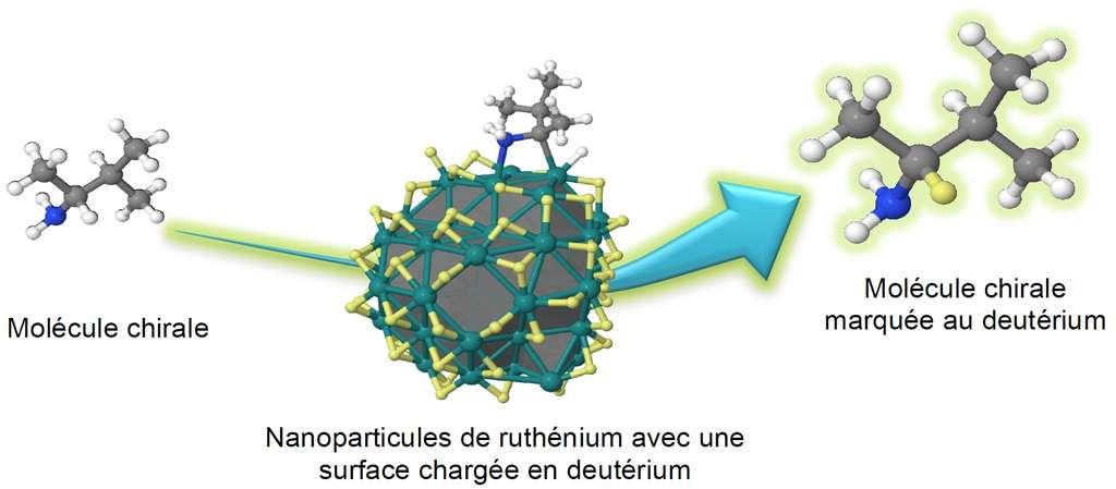 Échange isotopique entre le carbone chiral de la molécule (à gauche) et la nanoparticule de ruthénium (au milieu), dont la surface est imprégnée en deutérium. Ici, un atome de deutérium (en jaune sur le dessin de droite) vient remplacer un atome d'hydrogène. Ce marquage de la molécule s'effectue sans modifier sa structure tridimensionnelle initiale, donc en lui conservant toutes ses propriétés. © Romuald Poteau (CNRS) et Grégory Pieters (CEA)