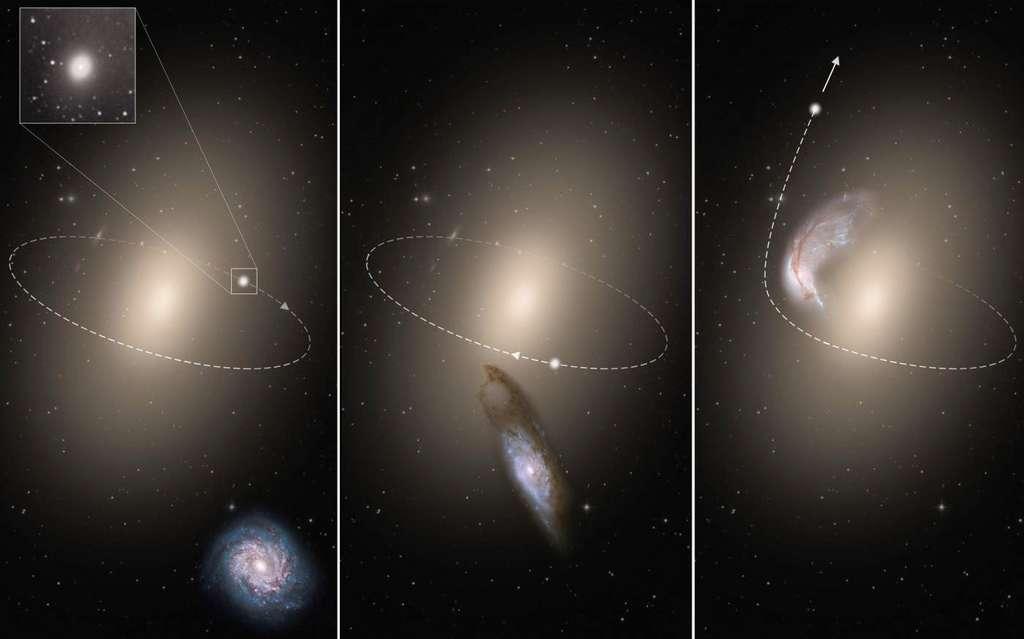 Vue d'artiste schématique du phénomène d'expulsion d'une mini-galaxie tel que décrit par le modèle d'interaction à trois corps de ces recherches : une galaxie spirale intruse approche d'un système composé d'une mini-galaxie elliptique en orbite autour d'une galaxie elliptique géante. Lors de son passage, l'intruse agit comme une catapulte gravitationnelle qui modifie l'orbite de la mini-galaxie. Cette dernière est alors propulsée en dehors du système alors que la galaxie spirale est absorbée par la galaxie elliptique géante. © Esa, Nasa, Hubble, Andrey Zolotov (artwork)