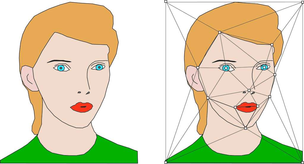 Triangulation d'un visage. La forme n'a pas besoin d'être respectée mais les sommets doivent se situer en des points remarquables. © Hervé Lehning, DR