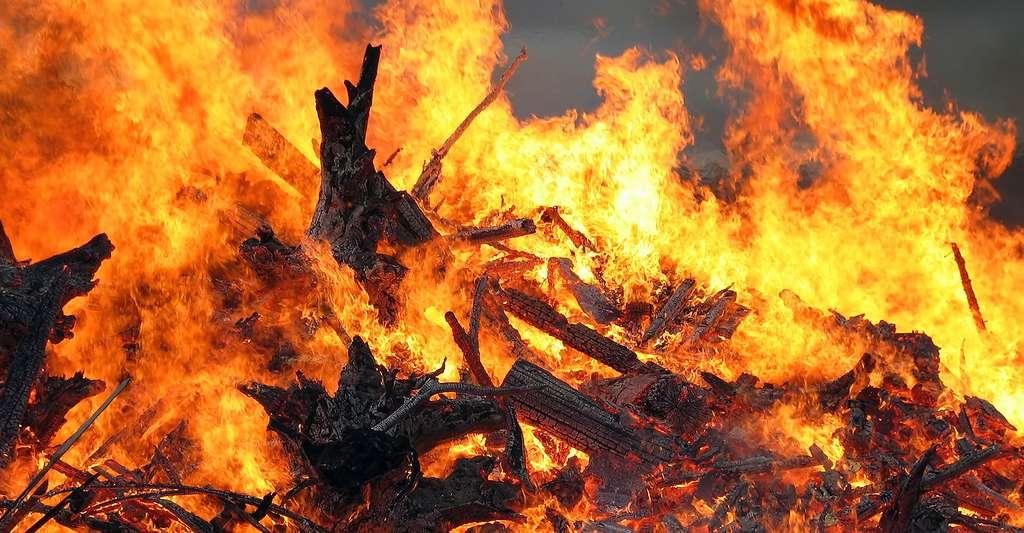 Bois en combustion. Les combustions spontanées sont très rares sur Terre, car les réactions de combustion courantes nécessitent d'être « activées » par un apport d'énergie suffisant pour la déclencher. © Janne Karaste, CC by-sa 3.0