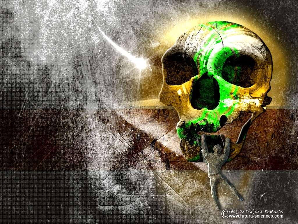 La vie la mort
