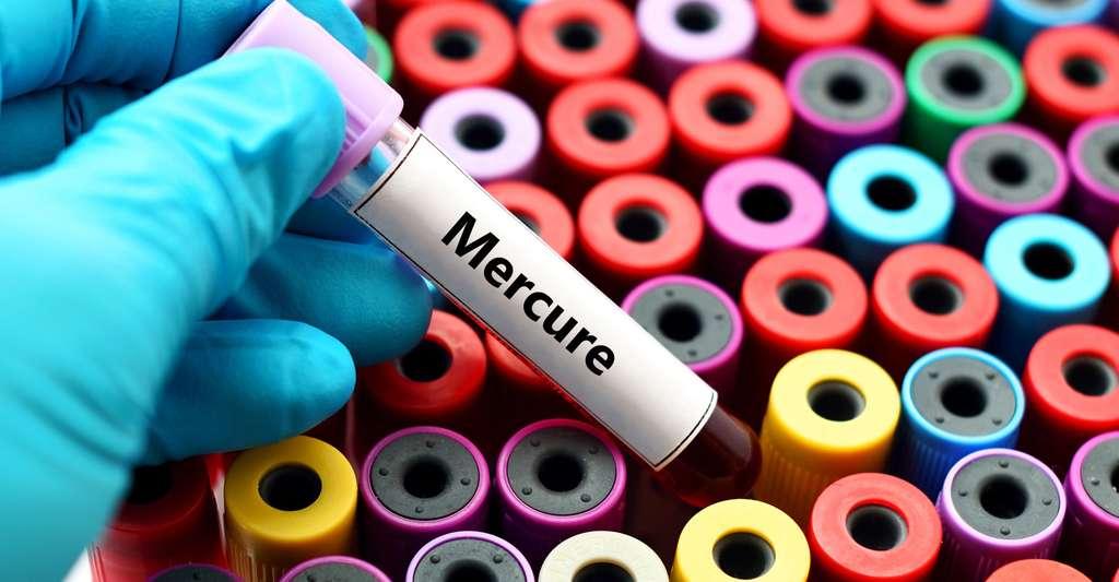 Le mercure est un élément toxique. © Jarun Ontakrai, Shutterstock