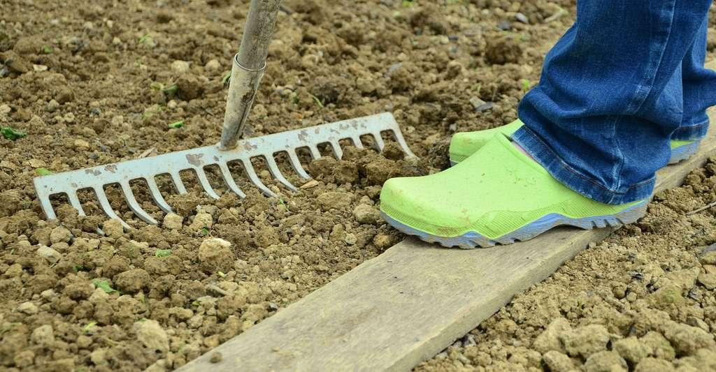 Bien préparer le terrain. © Congerdesign, Pixabay, DP