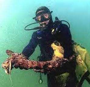 A l'abri dans sa combinaison, le plongeur constate les dégâts