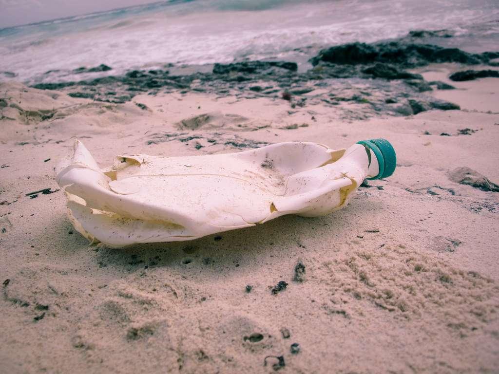Le plastique représente 12 % des déchets municipaux. © Angela Rutherford, Flickr