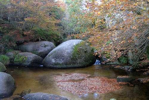 Forêt du Huelgoat. © Thesupermat GNU FDL 1.2