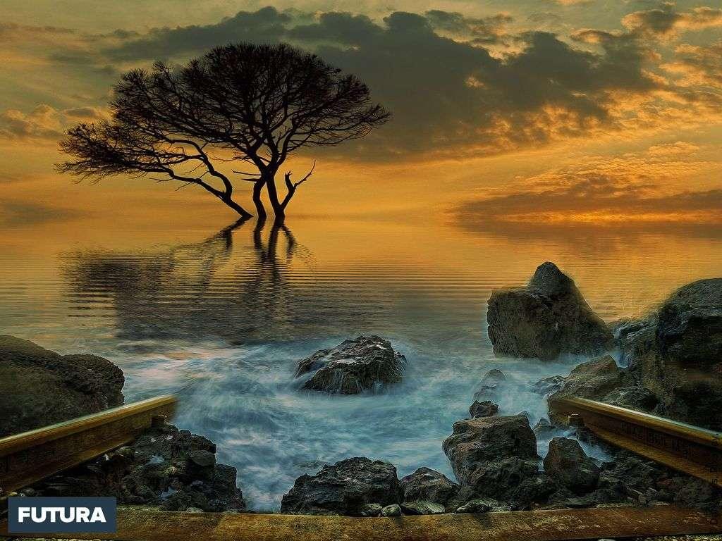 Fais de ta vie un rêve, et d'un rêve, une réalité. Antoine de Saint-Exupéry