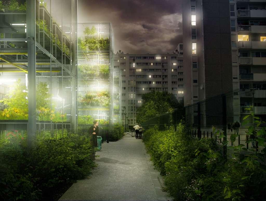 La Mini ferme, semblable à des serres urbaines verticales