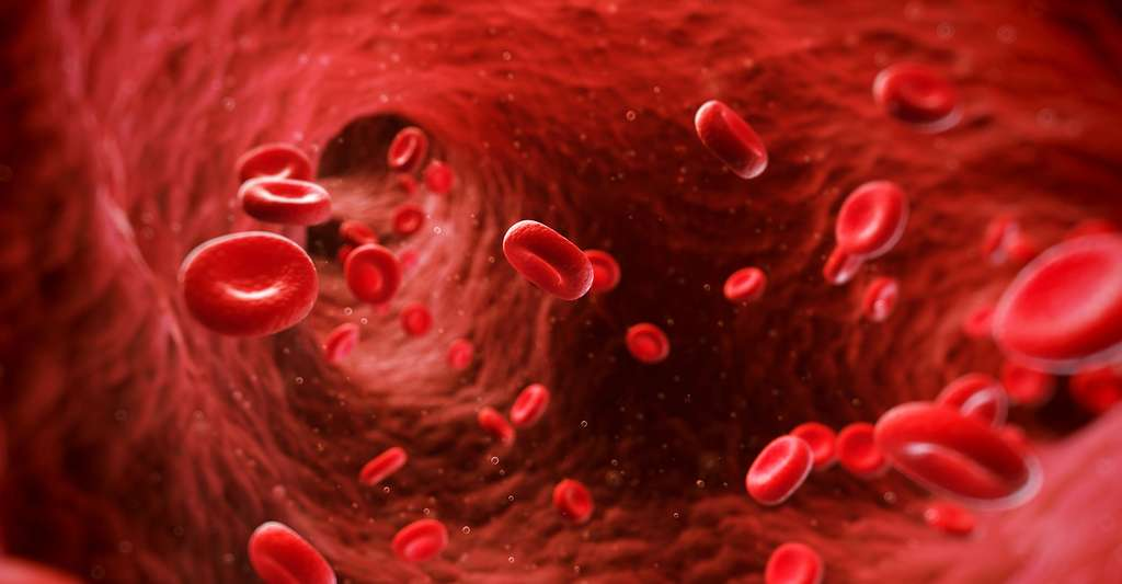 Diagnostic de l'hémophilie. © Sebastian Kaulitzki, Shutterstock