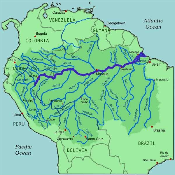 Le fleuve Amazone draine une surface de plus de 6 millions de km2 qui occupe 40 % de l'Amérique du Sud. © Kmusser, Wikimedia Commons