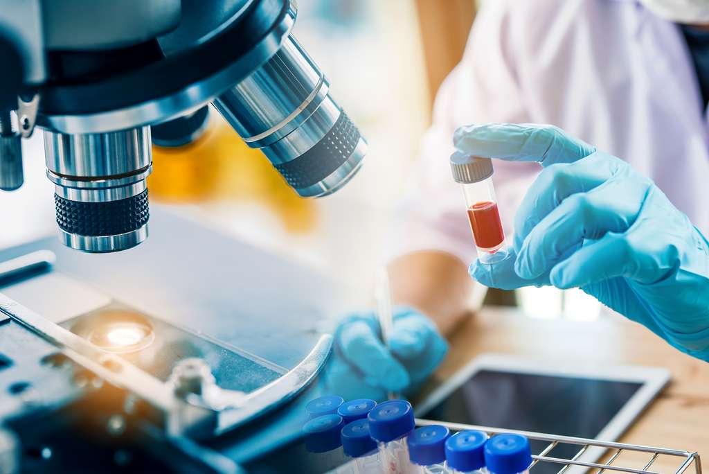 Un technicien de laboratoire analyse le prélèvement de sang d'un patient. © totojang1977, Adobe Stock