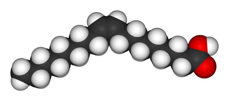 L'acide oléique, acide gras mono-insaturé (oméga-9), est le composant essentiel de l'huile d'olive. De plus en plus d'études démontrent ses bienfaits sur la santé, même si ici son action n'a pas été directement prouvée. Crédits DR