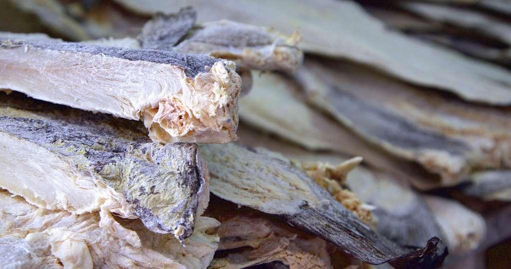 De la morue séchée, ou bacalhau en portugais. © Terry Kearney, Flickr