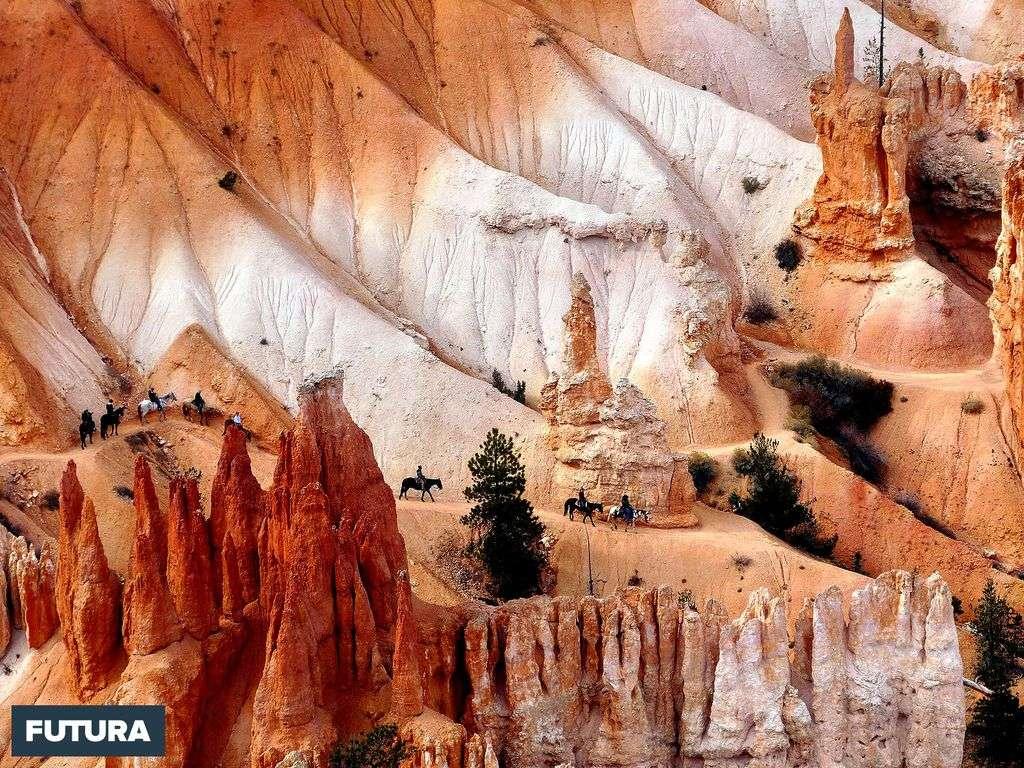 Randonnée à cheval dans les canyons de l'ouest américain