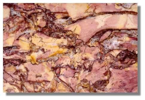 Echantillon de Brocatelle mélangée de Chassal : calcaire bréchique, à stylolithes, Crétacé inférieur (Barrémien). Musée d'Archéologie, Lons-le-Saunier - Photo : Inv. Y. Sancey - © Inventaire général, ADAGP, 1997