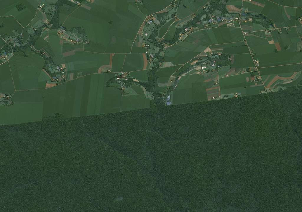 Une image saisissante montrant d'un côté la forêt, et de l'autre le grignotage, le tout suivant une belle ligne toute droite. © Cnes, Distribution Airbus DS