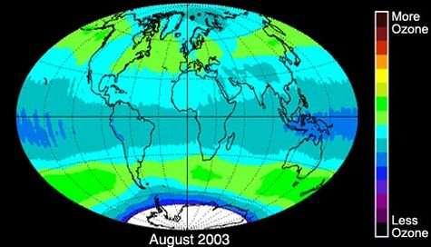 Distribution de l'ozone dans notre atmosphère, mesurée en août 2003 par le spectromètre TOM (pour Total Ozone Mapping). Crédits : NASA/Goddard