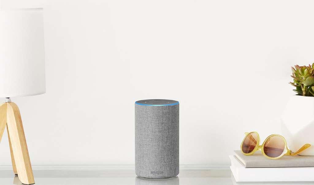 Puisque la voix par défaut d'Alexa, Google Home ou Siri est féminine et que ces objets connectés répondent à des ordres, peut-on parler de misogynie ? © Amazon