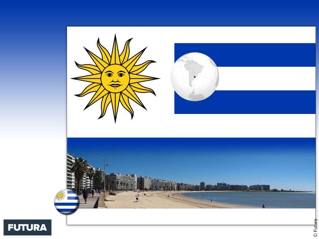 Drapeau : Uruguay