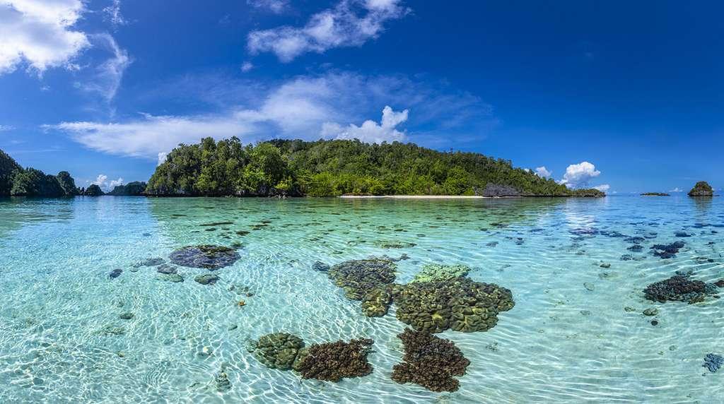 Panorama d'un des nombreux îlots de Misool. © Gabriel Barathieu, tous droits réservés