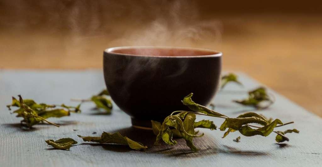 Le thé une méthode naturelle contre la cystite. © Fxxu, Pixabay, DP