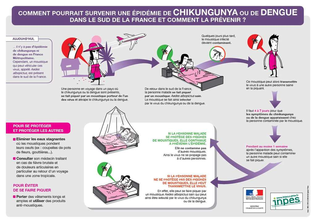 Plaquette récapitulative des précautions à prendre dans la lutte contre le chikungunya dans le sud de la France, selon le Ministère de la Santé et l'INPES.