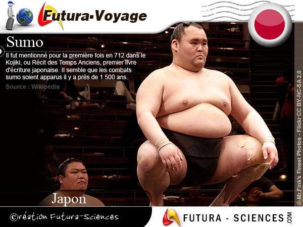 Sumo - Japon