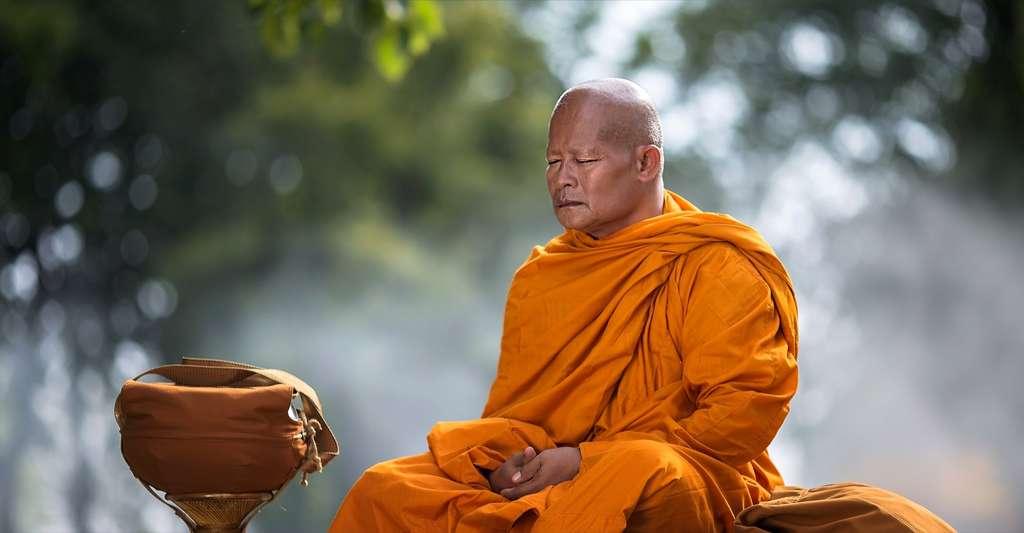 D'après certains chercheurs, la méditation permettrait d'accéder à un état comparable à une des phases du sommeil sans rêves. © Ninja SS, Shutterstock