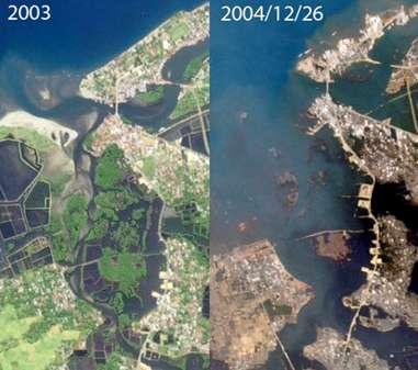 Figure 12 : Traces laissées à Banda Aceh (Indonésie) par le tsunami de 2004.