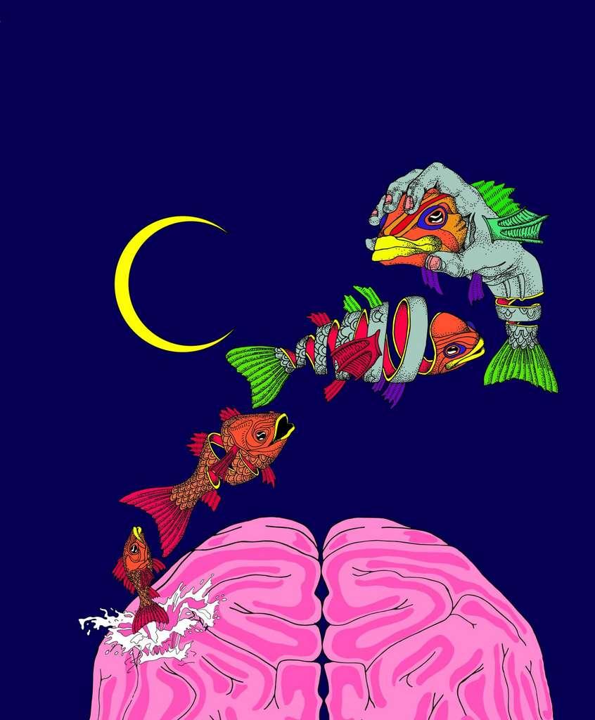 Cette illustration représente l'hypothèse du cerveau sur-ajusté, qui prétend que la qualité clairsemée et hallucinatoire des rêves n'est pas un bug, mais une caractéristique, car elle aide à empêcher le cerveau de se sur-adapter à ses sources d'apprentissage quotidiennes biaisées. © Georgia Turner