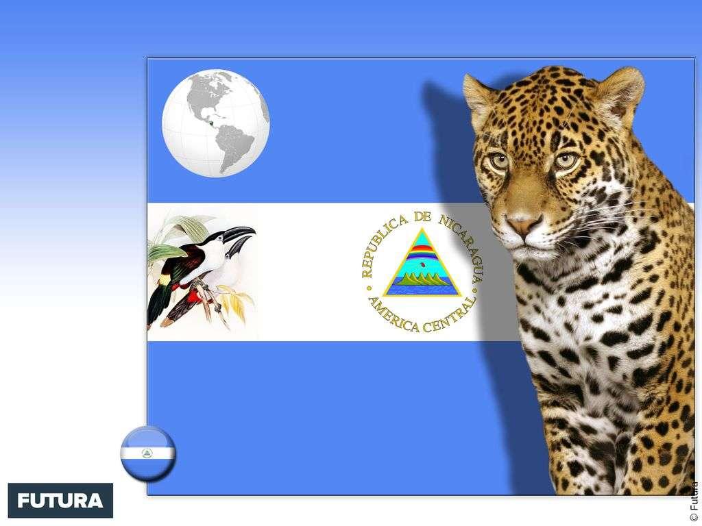 Drapeau : Nicaragua