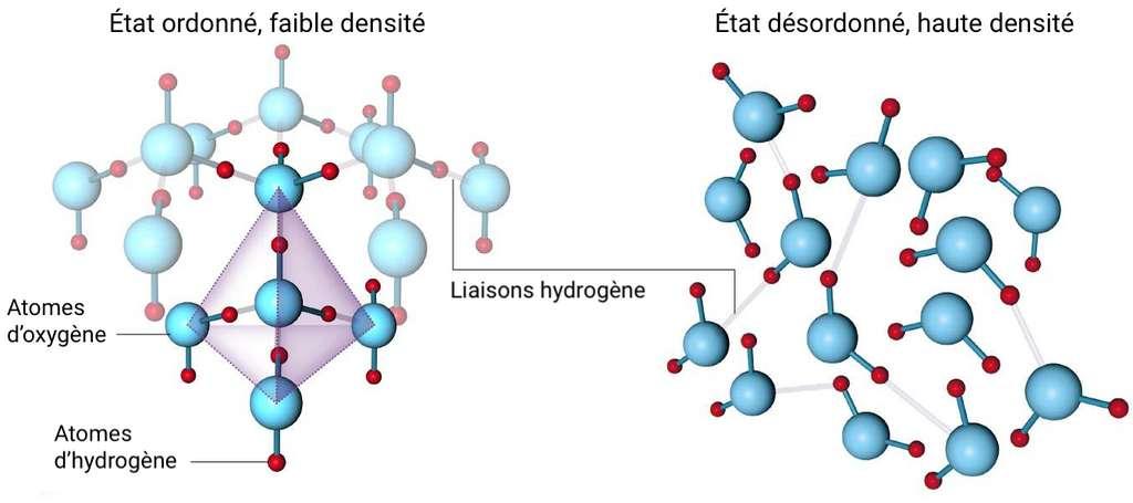 L'eau liquide peut coexister sous deux formes de densité différentes, ce qui expliquerait ses étranges propriétés. © Céline Deluzarche, Futura, d'après New Scientist.