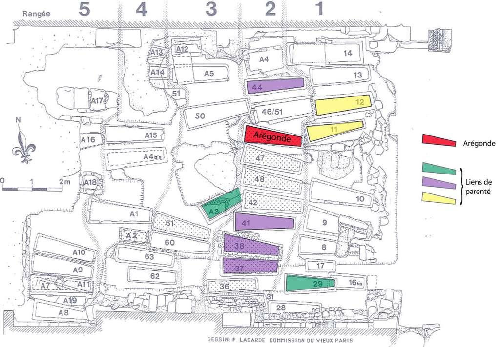 Fig. 9 - Répartition des individus apparentés, inhumés dans le sous-sol de la basilique, d'après l'étude de l'ADN mitochondrial menée par l'équipe du Pr. Jean-Jacques Cassiman. © V. Gallien sur fond de plan Commission du Vieux Paris