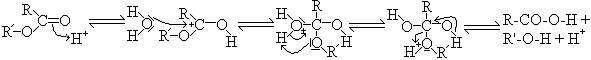 Le mécanisme de la première réaction est un classique tétraédrique / R = ose du timbre R' = ose du support