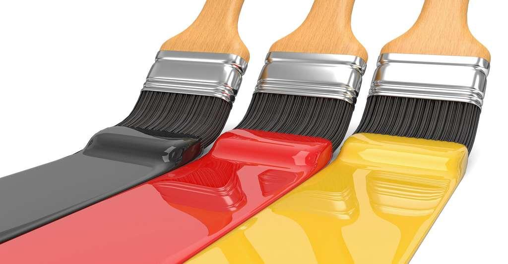 Comment se fait notre vision des couleurs ? © Fotomek, CCO