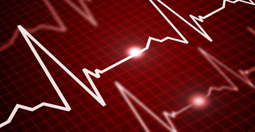 Qu'est-ce que la fréquence cardiaque ? © Sergey Nivens, Shutterstock