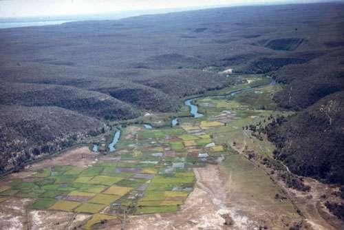 Rizières traditionnelles aménagées aux dépens de la mangrove et des tannes près de Saint-Augustin (Sud-Ouest malgache) © JM Lebigre Reproduction et utilisation interdites