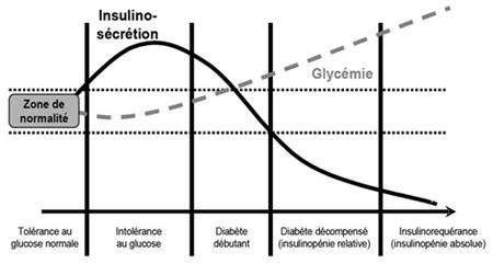 Schéma de l'évolution du taux de glucose (glycémie) dans le cas du diabète de type 2. Au fur et à mesure de l'avancement du diabète de type 2, le taux d'insuline secrétée par l'organisme diminue. La glycémie augmente ainsi, dépassant largement la « zone de normalité ». © D'après Blicklé J.-F. Traitements oraux du diabète. Encycl. Med Chir (Elsevier, Paris), Endocrinologie-Nutrition, 10366-R-20, 1999