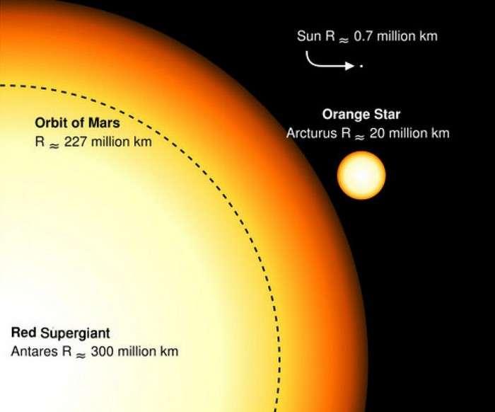 Comparaison des tailles respectives du Soleil, d'Arcturus et d'Antarès. © Sakurambo