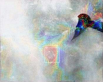 La même image que la précédente mais traitée à l'ordinateur, les flèches indiquent la direction des mouvements de l'eau et les couleurs, en bleu et rouge, les plus grandes vitesses. Crédit : Rensselaer/Tim Wei
