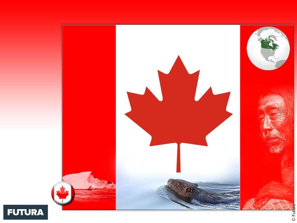 Drapeau : Canada