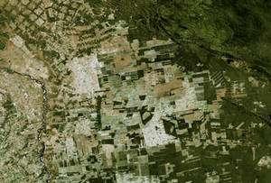 En Bolivie, la forêt tropicale est grignotée par l'extension continue des cultures. Ces champs ne sont plus à destination des marchés locaux mais destinés aux exportations. © Nasa / Goddard Space Flight Center Scientific Visualization Studio