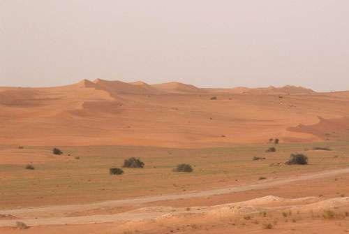 Vue vers le Nord de l'erg Azéfal le long de la route Nouakchott-Nouadhibou en Mauritanie (octobre 2005). Une grande partie de cette route est menacée par l'allongement des sifs issus du remaniement éolien des sables des anciens cordons longitudinaux rubéfiés auparavant fixés par un couvert végétal.